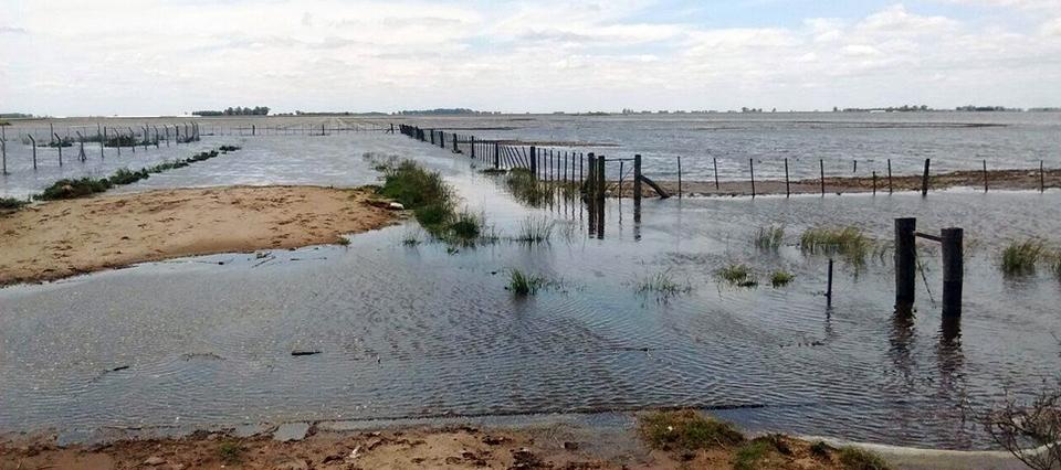 """En Hipólito Yrigoyen el 70% de los campos están inundados: """"Está todo perdido"""""""