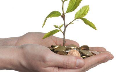 Lanzan Wuabi, la primera plataforma para invertir en proyectos agropecuarios