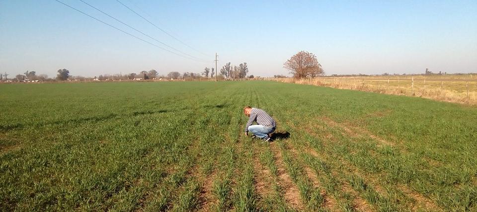 Los productores primarios de Santa Fe deberán actualizar sus datos en el Registro Único