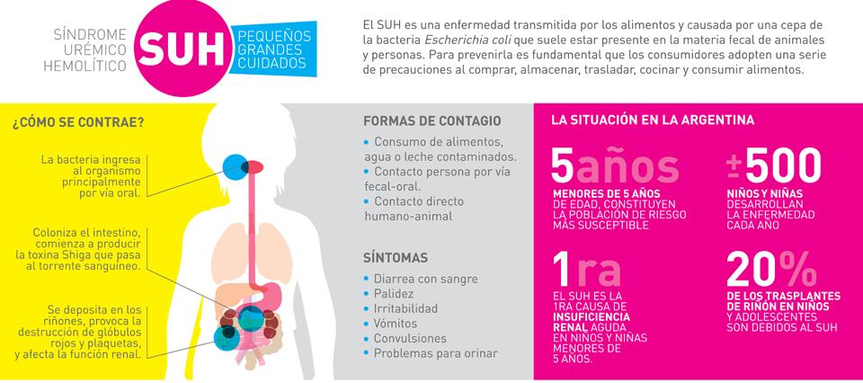 Cómo prevenir el Síndrome Urémico Hemolítico (SUH)