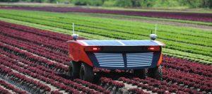 Robot agricola