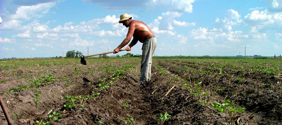 La agroecología adquiere fuerza en América Latina y el Caribe