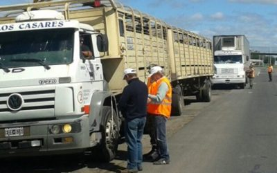 control senasa camiones