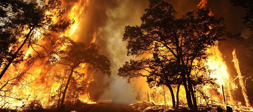Prevén un verano con graves incendios, fuertes tormentas y cortes de luz