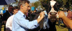 macri vaca