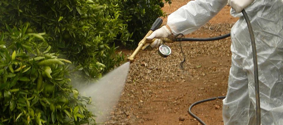 Paraná ya prohibió la comercialización y aplicación del glifosato