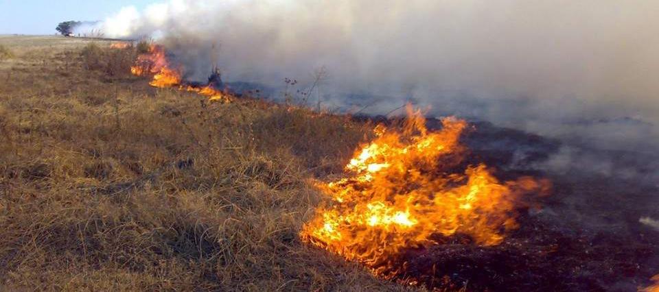 Incendios Mendoza
