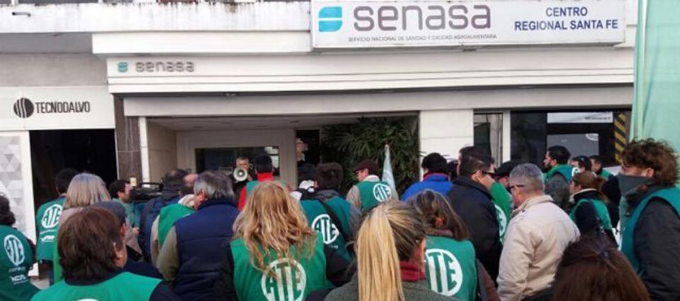 Confirman 130 despidos a contratados en el Senasa