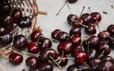 Confirmado: las cerezas dulces ayudan a reducir el aumento de peso