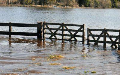 Llegó INUNDApp, la aplicación del CONICET que ayuda a prevenir inundaciones
