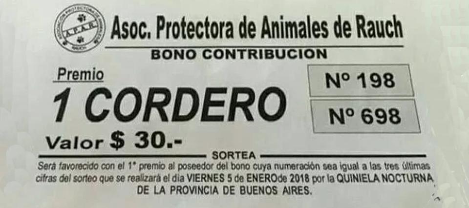 Insólito: una asociación protectora de animales rifa un cordero para reunir fondos