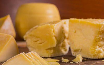 El INTI comenzó a realizar ensayos con enzimas para acelerar la maduración de quesos