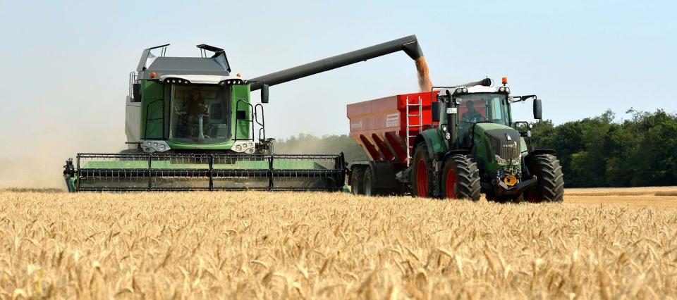 El costo de cosechar trigo en Córdoba fue 22% superior la campaña anterior