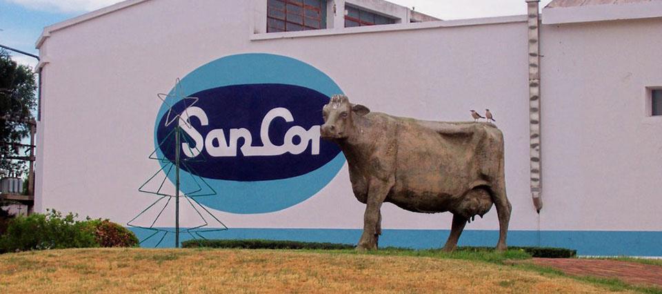 vaca sancor