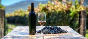 vino uvas 960