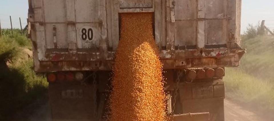 Resultado de imagen para paro afecta el abastecimiento y molineros