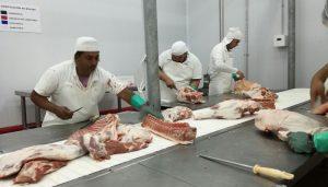 desposte porcino