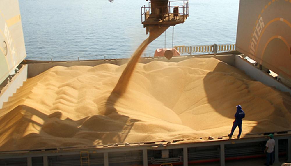 Los principales destinos de las exportaciones de granos y ...