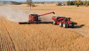 Carta de porte - Transporte de granos - Producción