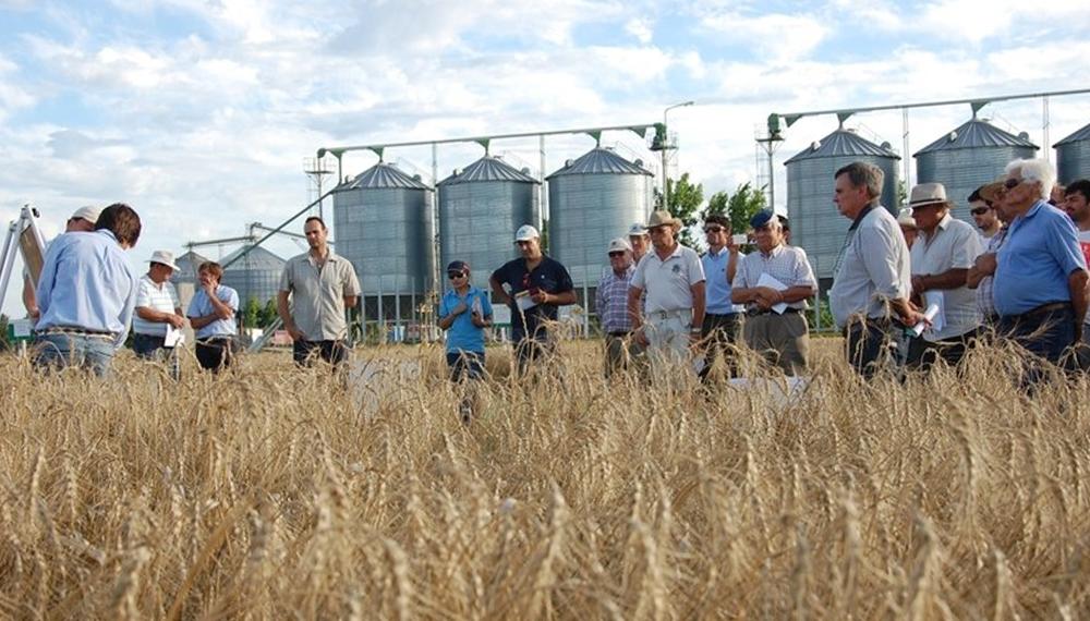 """Coninagro realizará el 1° """"Congreso Internacional de Cooperativismo Agroindustrial"""""""