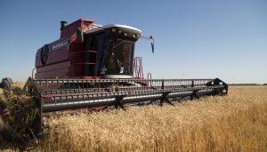 cosecha de soja infocampo