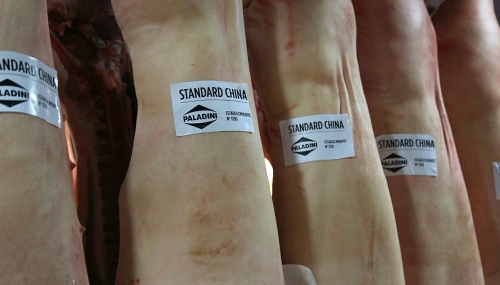 Salió la primera exportación de carne de cerdo argentina a China ...