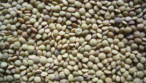 Trigo - Bolsa de Cereales - Retaa