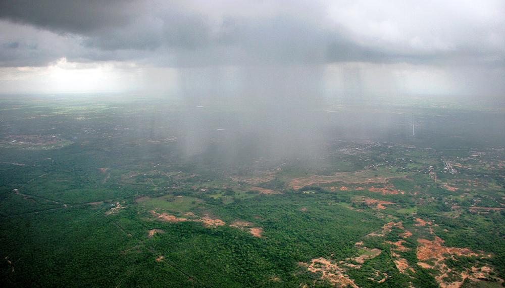 lluvias campo infocampo pronóstico