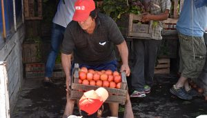 Consejo Agroindustrial Argentino - Presidente