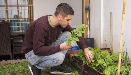 Aapresid: advierte que además de la siembra directa, aun hay que mejorar en cultivos de servicios y siembra de gramíneas