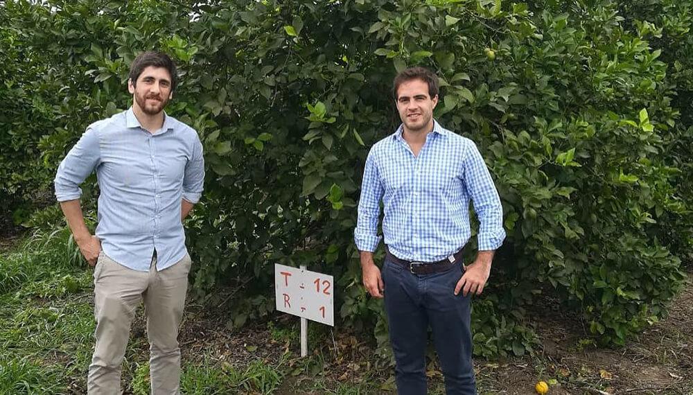 Nanótica Agro: Julio Laurenza - Matías Badano - Nanótica Agro en un campo de limón.