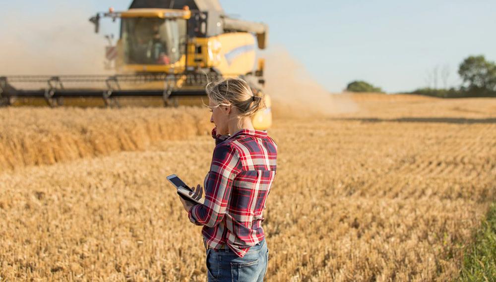 Ingeniera hablando por telefono en cosecha