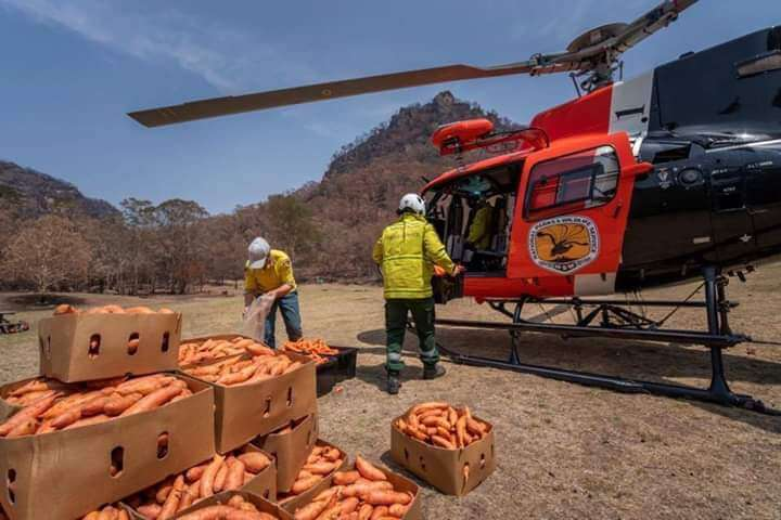 helicoptero australia