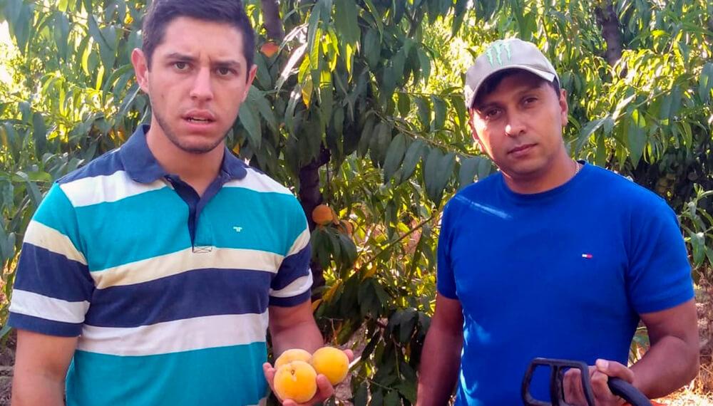 Productores de durazno Pedro Manzano Eber Perez Plaza