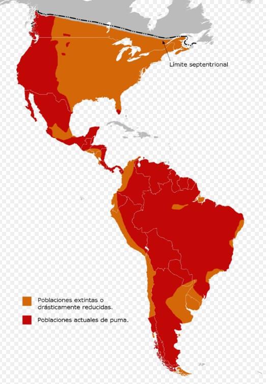 distribución del puma