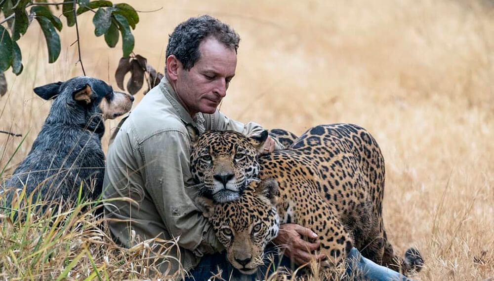 jaguares brasil