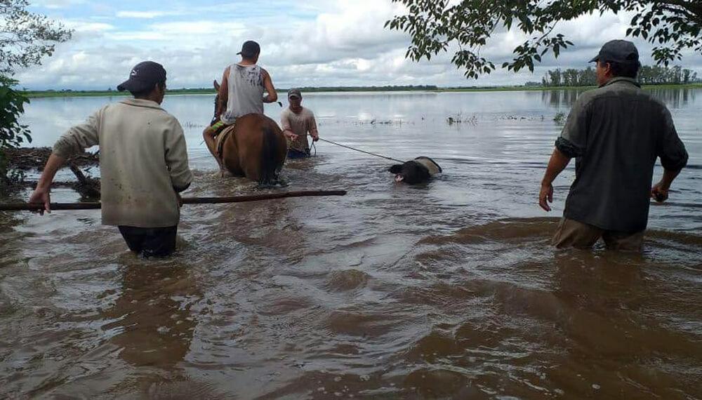 Inundaciones en tucumán
