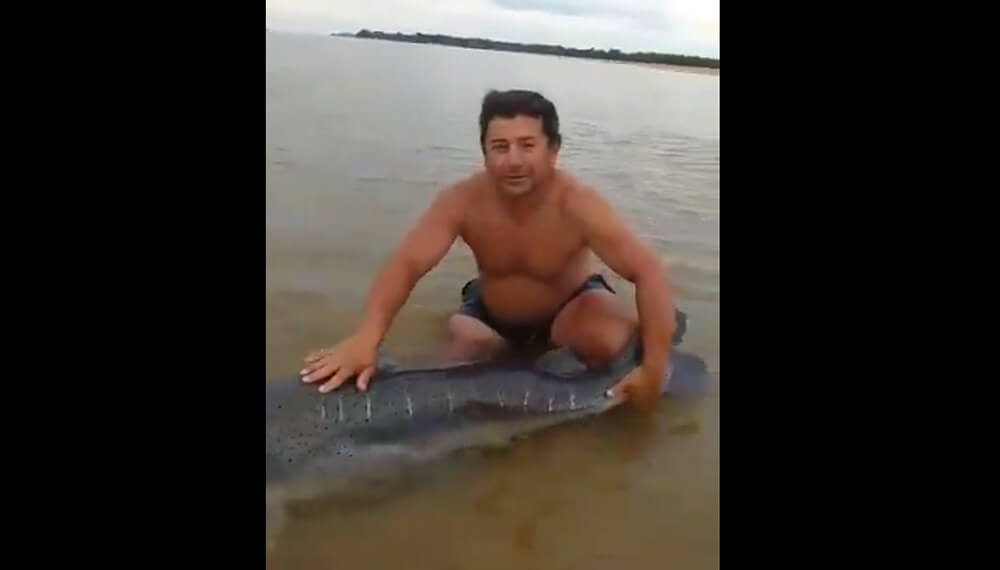 hombre con un surubí en el río paraná