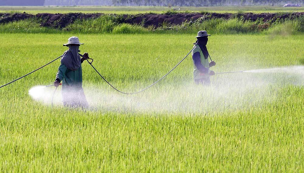 campo aplicaciones herbicidas