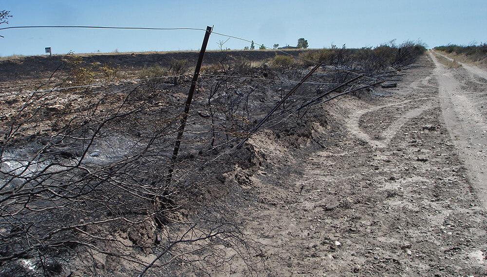 campo quemado