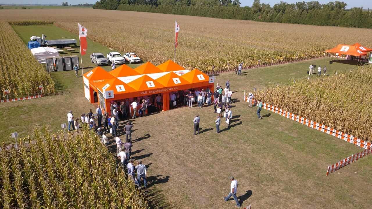 campo cultivos demostración