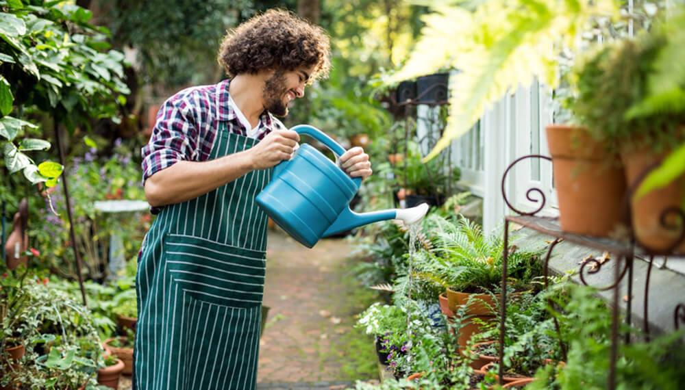 hombre regando plantas en huerta