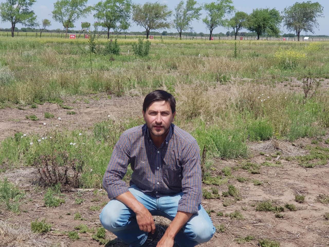 Malezas - Juan Caporicci, gerente de Herbicidas - FMC
