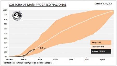 avance de cosecha de maiz