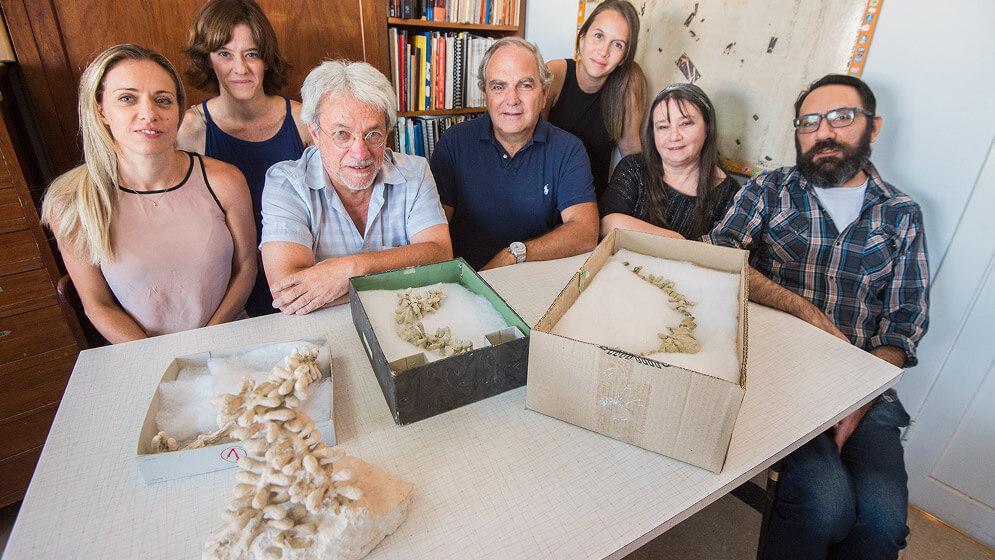 equipo del conicet con fósiles