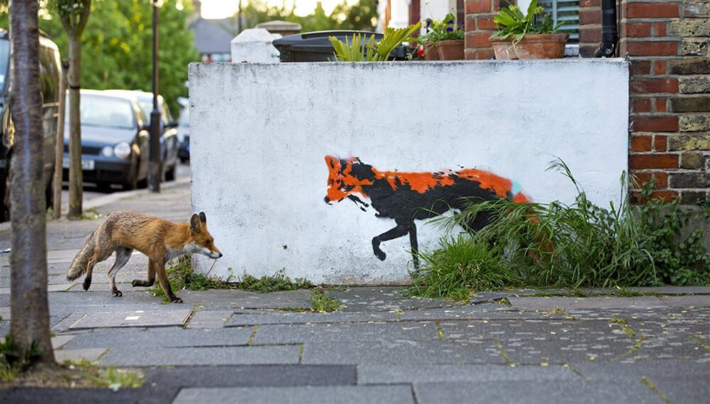 zorro en las calles de londres