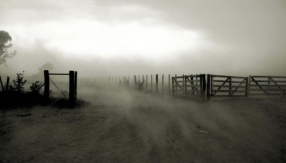 viento pampero en el campo