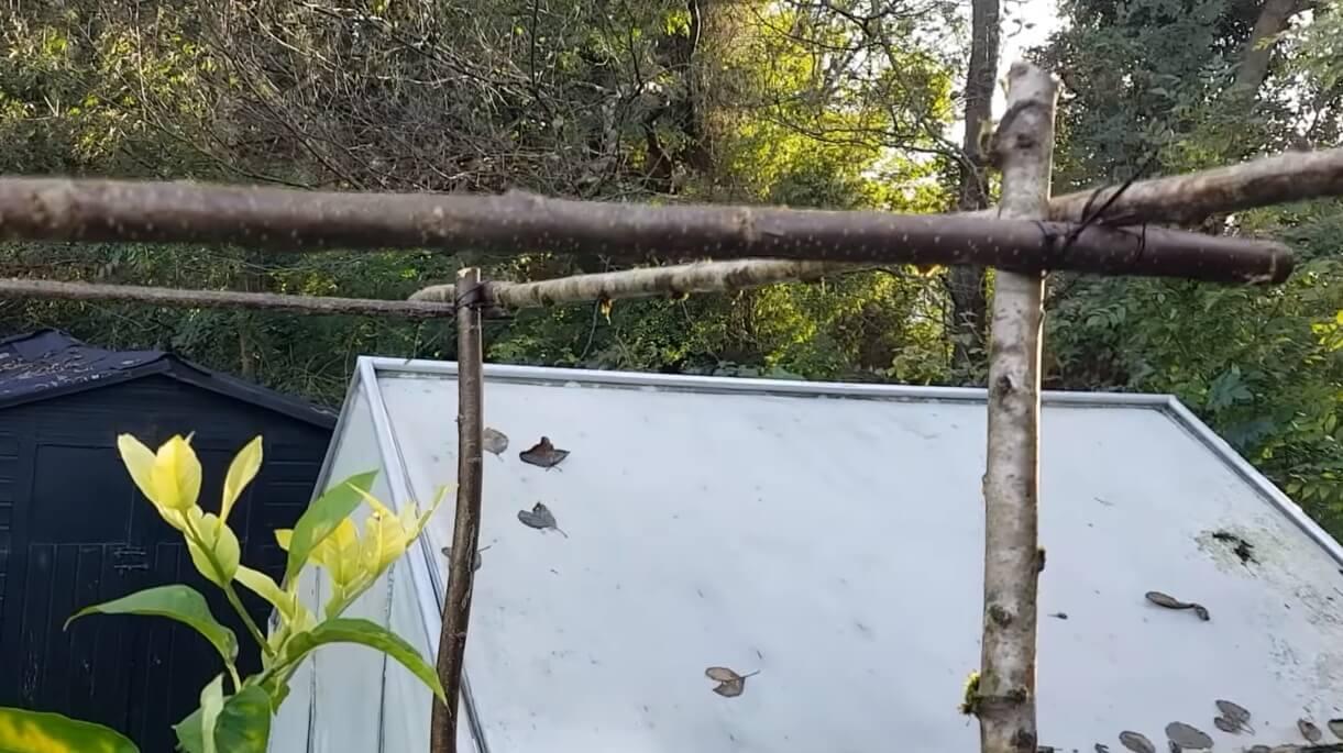 techo de palos