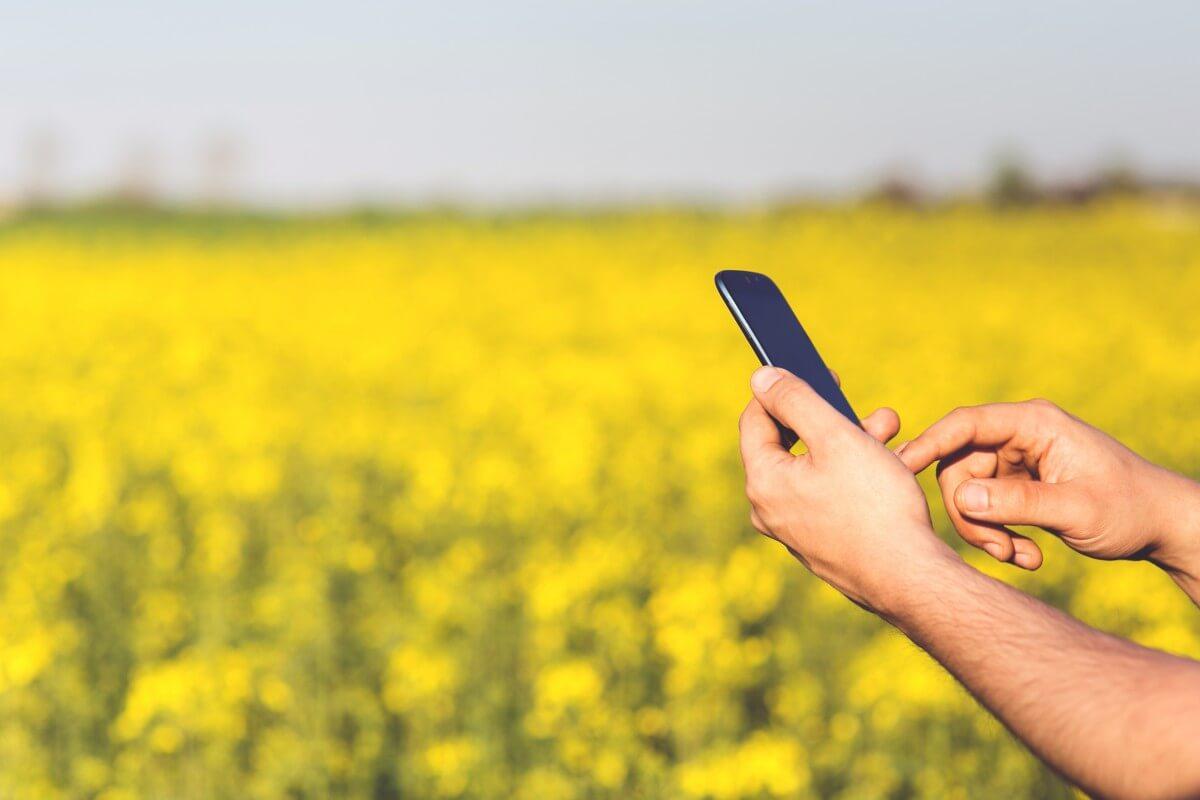 usando app en el campo