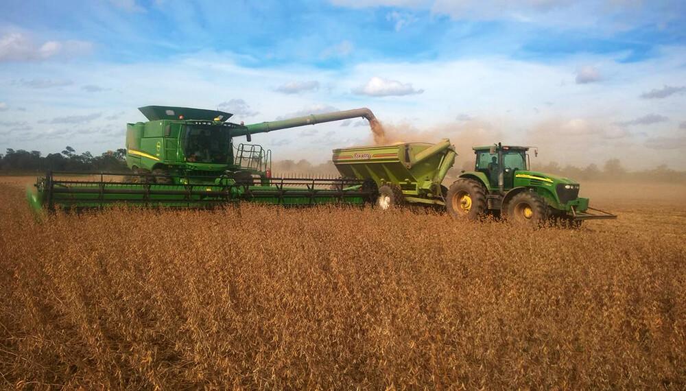 cosecha soja campo